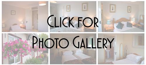 delaneys_gallery_icon